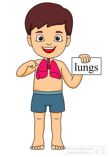 anatomy-boy-with-lungs.jpg