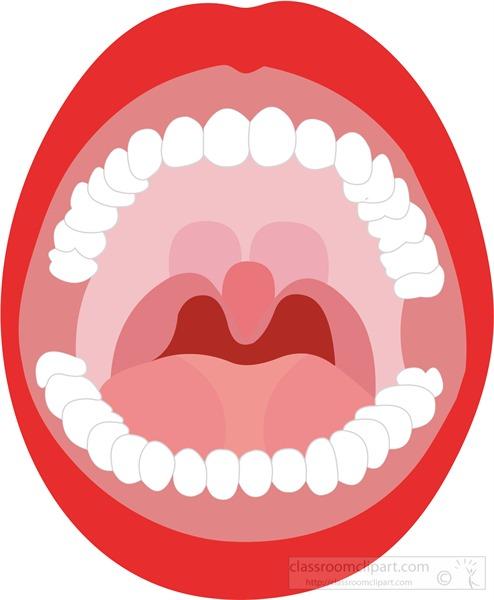 full-mouth-red-lips-upper-lower-teeth.jpg