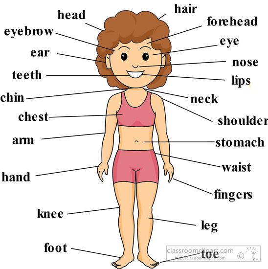 girl-anatomy-body-parts-labeled-2.jpg