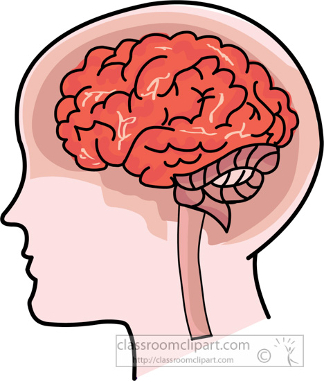 head-with-human-brain-anatomy-clipart-017.jpg