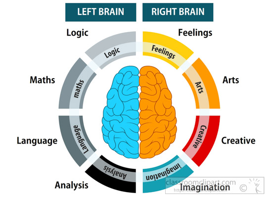 human-anatomy-Illustration-of-left-right-brain-functions-clipart.jpg