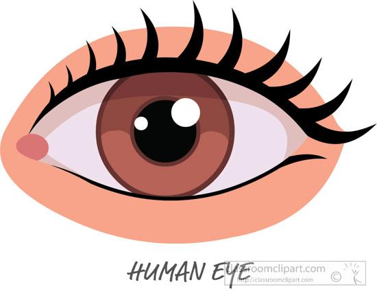 human-eye-clipart.jpg