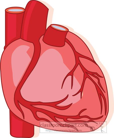 human-heart-arteries-veins-clipart-017.jpg