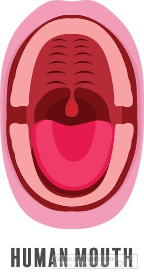 human-mouth-clipart-1.jpg