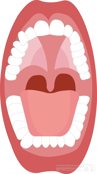 open-human-mouth-showing-tongue-upper-lower-teeth.jpg