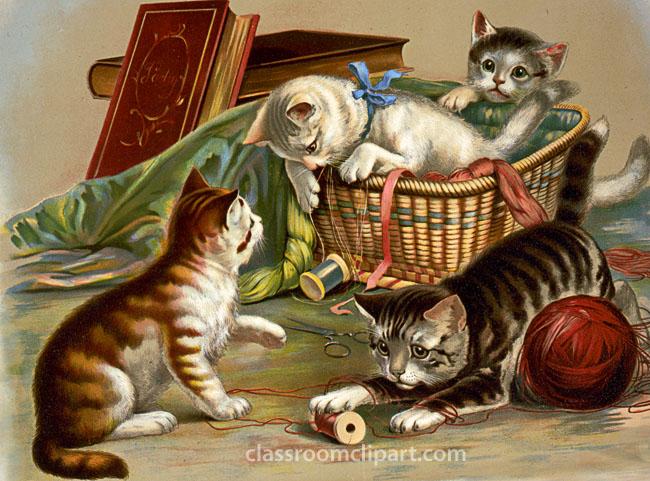 cute_cats_playing.jpg
