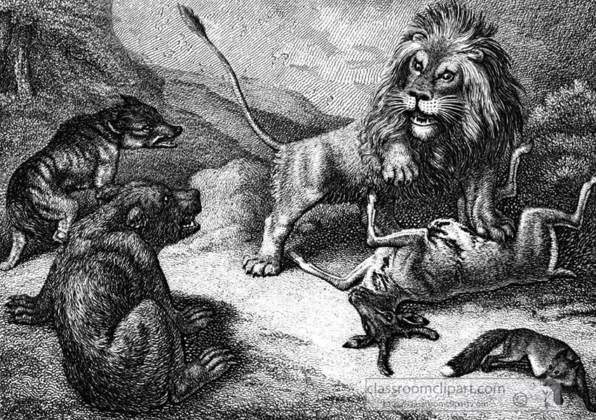 lion_wolf_029.jpg