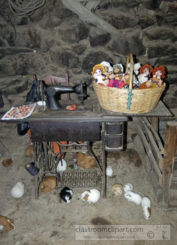 Interior-home-with-guinea-pigs-peru-photo.jpg