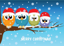 birds on tree branch merry christmas animation size 183 kb - Animated Christmas Pictures
