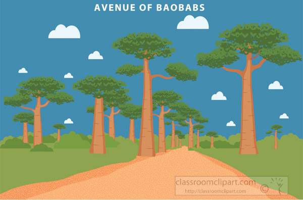 avenue-of-the-baobabs-madagascar-africa-clipart.jpg
