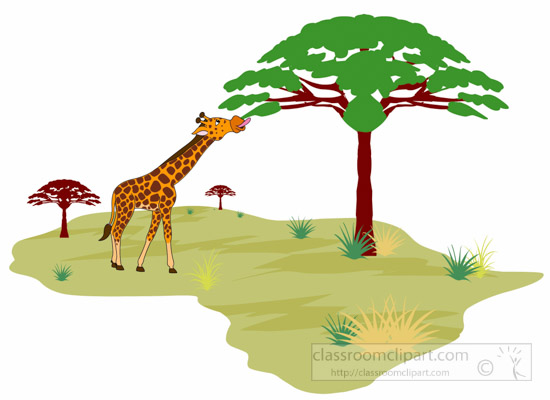 giraffe-eating-tree-leaves-in-african-land-africa-clipart.jpg