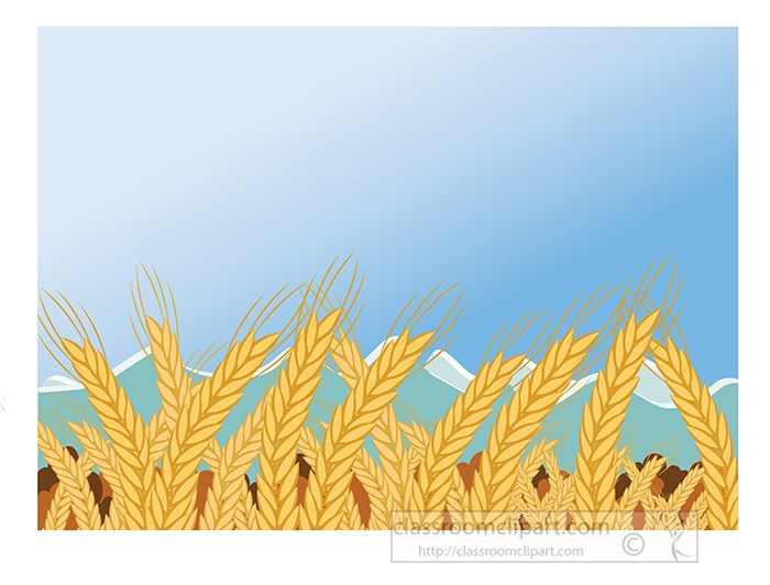 agriculture-clipart-wheat-fields.jpg