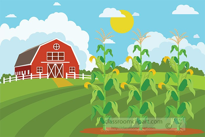 red-farm-house-with-growing-corn-clipart.jpg