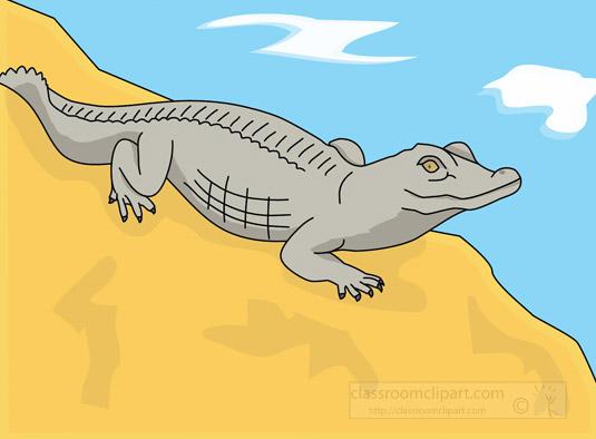 alligator-resting-along-the-shore-clipart.jpg