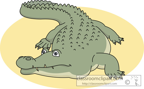 alligator_630.jpg