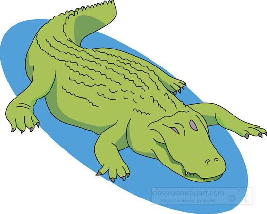 large-green-alligator-clipart.jpg