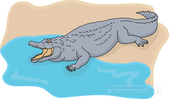 open-mouth-alligator-entering-water-clipart.jpg