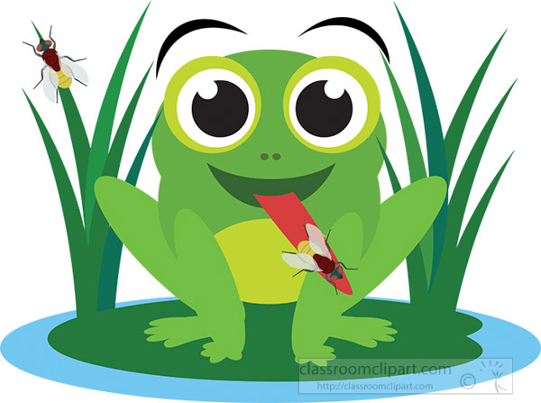 big-eyed-cute-frog-sittng-on-leaf-eating-insect.jpg