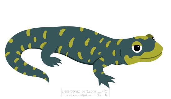 blue-green-amphibian-salamander-clipart.jpg