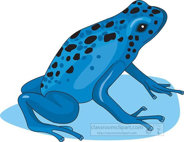 blue-poison-dart-frog-clipart.jpg