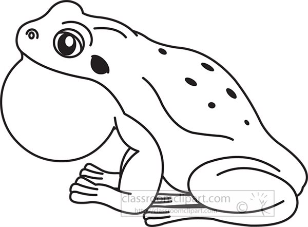 bull-frog-vector-black-outline-clipart.jpg