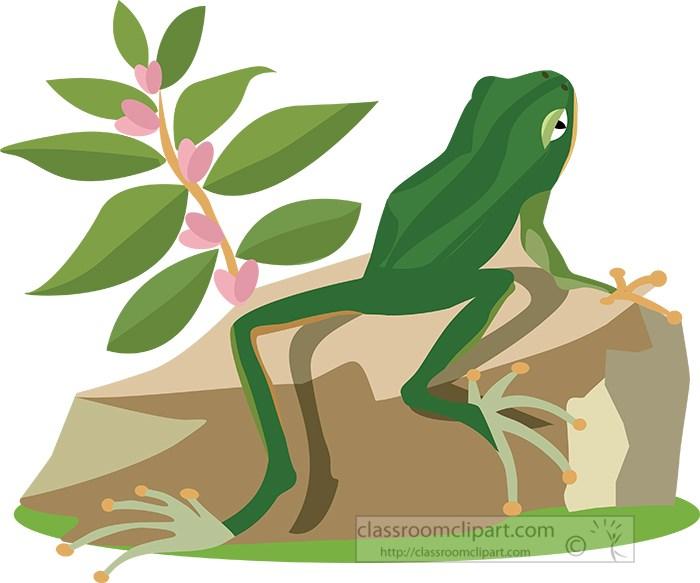 green-frog-sitting-on-rock-clipart.jpg