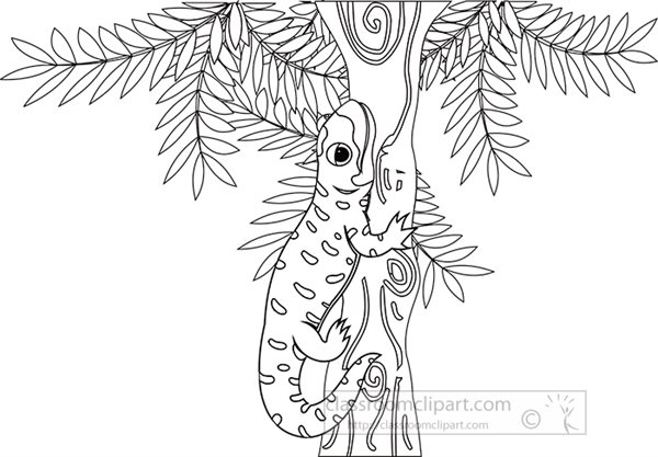 salamander-attached-to-tree-branch-clipart-2020a.jpg