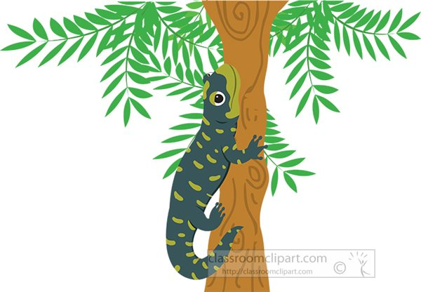 salamander-attached-to-tree-branch-clipart.jpg