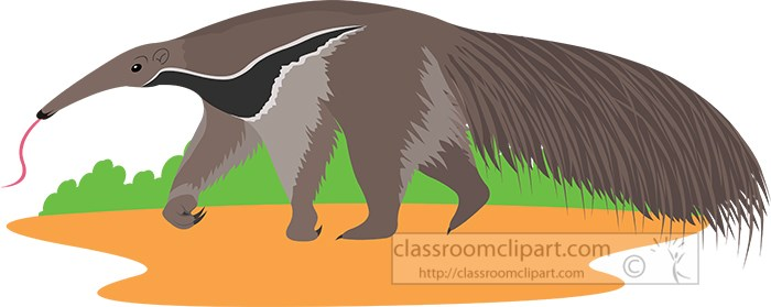 anteater-insect-eating-animal-clipart.jpg
