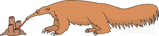 anteater-on-ant-hill-eating-ants-clipart.jpg