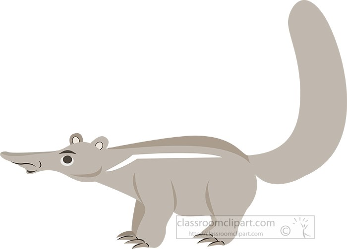 anteater-standing-on-all-four-legs.jpg