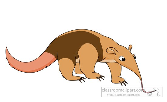 anteater-with-long-tongue-clipart.jpg