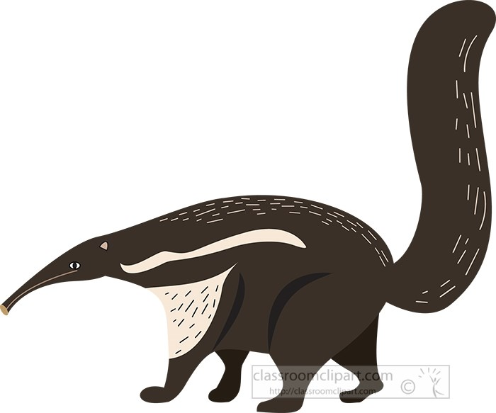 brown-white-anteater-vector-illustration.jpg