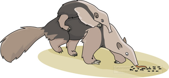 clipart-of-mother-anteater-with-baby-on-her-back.jpg
