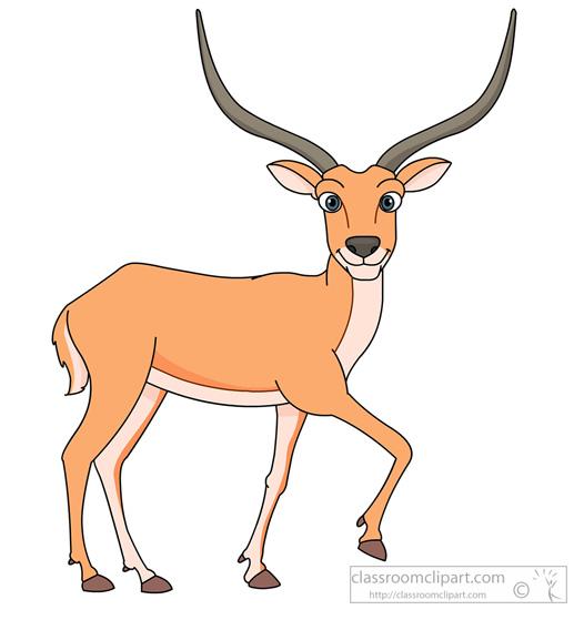 antelope-910.jpg