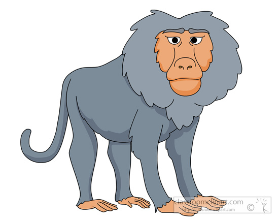 animal clipart baboon clipart baboon 910 classroom clipart rh classroomclipart com cute baboon clipart baboon clipart free