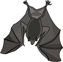 free bat clipart clip art pictures graphics illustrations rh classroomclipart com bat clip art images bat clip art outline