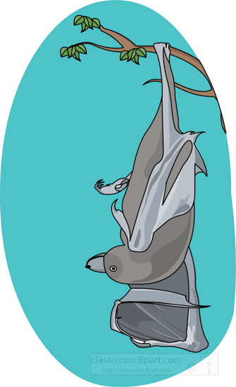 bat-hanging-upside-down-from-tree-branch-clipart.jpg