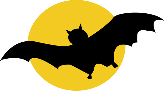 bat_123.jpg