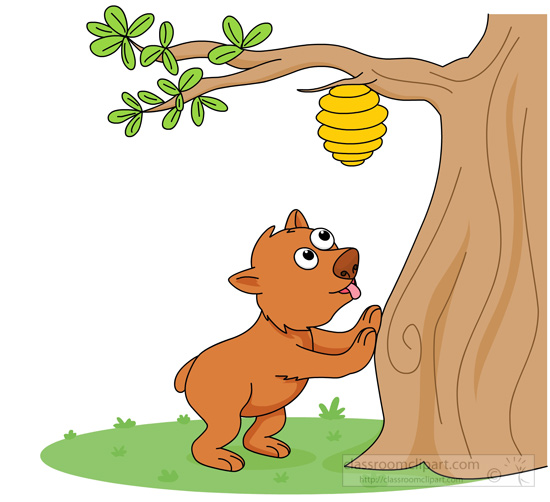 bear-looking-for-honey-beehive-on-tree.jpg