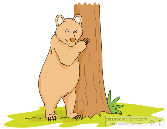 bear-standing-upright-near-tree.jpg