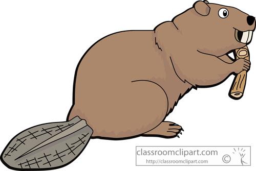 beaver_crca.jpg