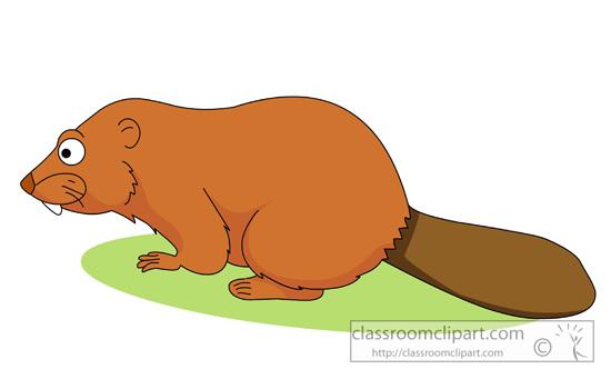 beavers_03_1029.jpg