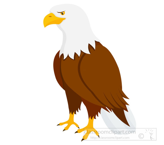 animal clipart bird clipart bald eagle clipart 725 classroom rh classroomclipart com eagle clipart with banner soar on wings eagle clipart mascot