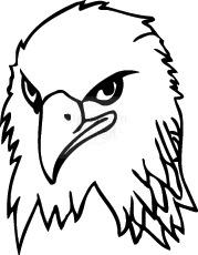 bald_eagle_125.jpg