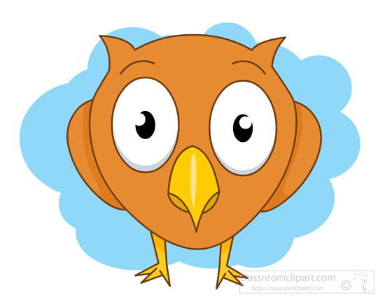 big-eyed-owl.jpg