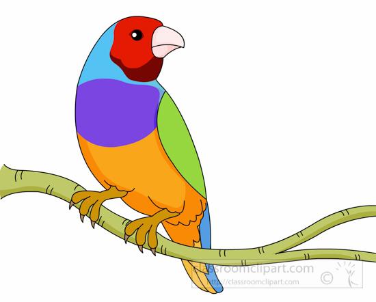 bird-gouldian-finch-clipart-6125.jpg