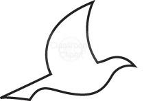 bird_113C.jpg