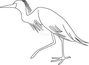 bird_198.jpg