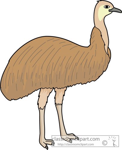 birds_emu_630.jpg